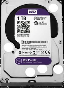 hd purple wd